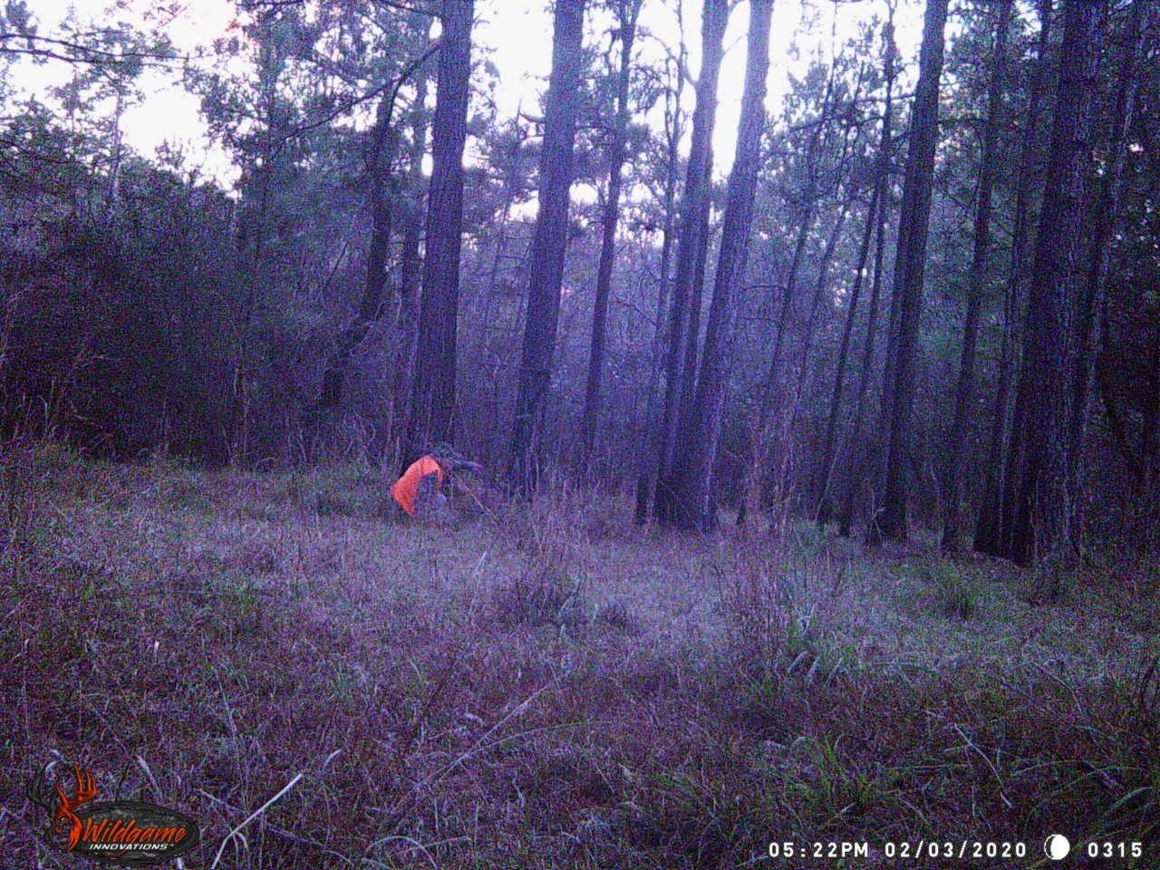 Stolen Tree Stand-onground-jpg
