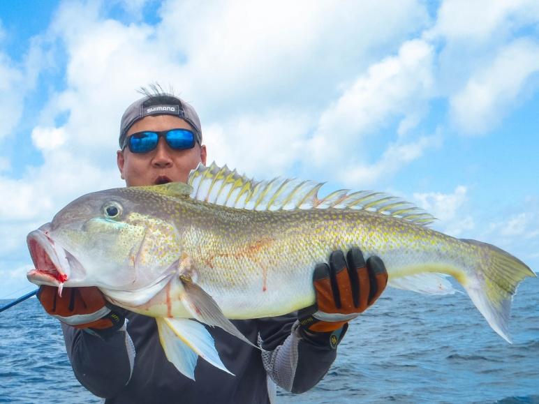 Swordfish bycatch-p5070108-jpg