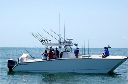Offshore Fishing--Super Strike Charters-p7091296-jpg
