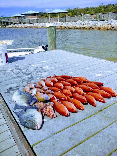 Pensacola Fishing Report 03/25/19-pensacola-fishing-charters-1-jpg