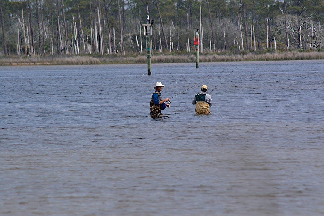 Easiest way to fish big lagoon?-perd2-jpg