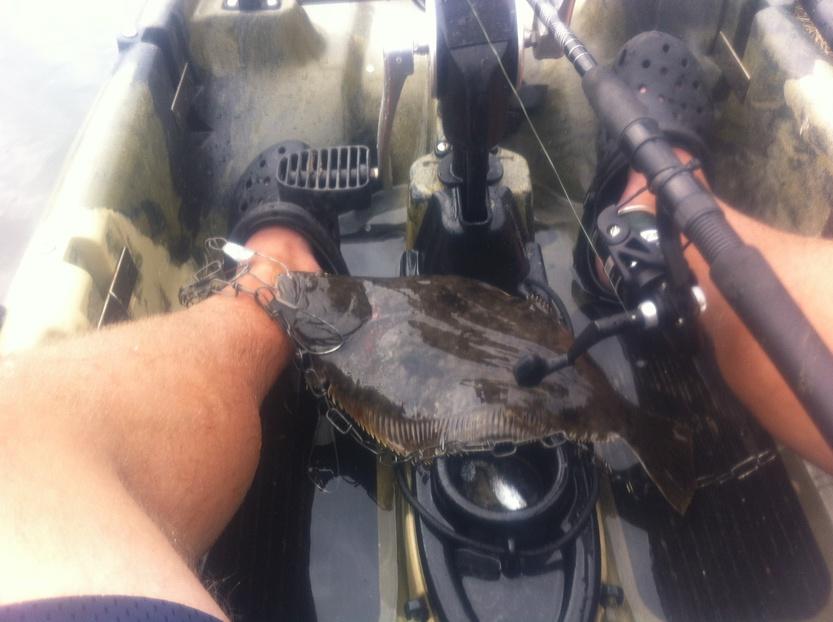 Flounder 3/9/15-photo-14-jpg