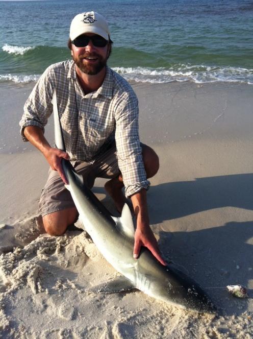 Pensacola Beach report 6/12-16-photo-34-jpg