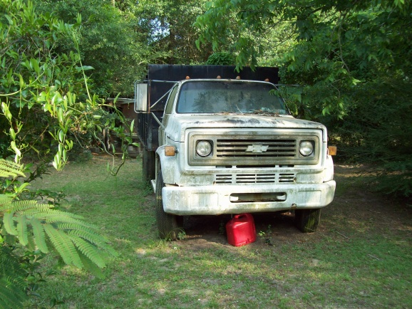 Chevy C60 Dump truck w/ a 327 - Pensacola Fishing Forum