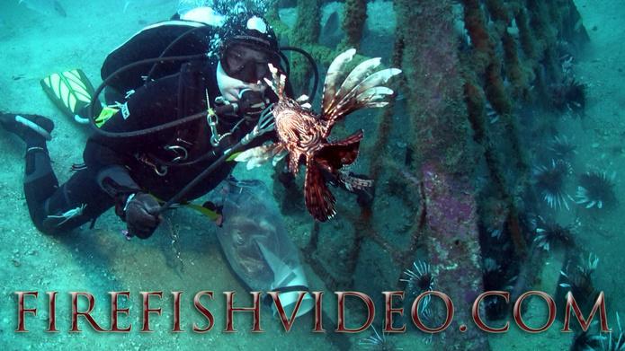 Lionfish Trip 2-18-2014-pyramid-diver2ff-jpg