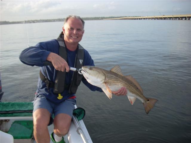 Redfish this evening off 3-mile.-redfish-ii-small-jpg