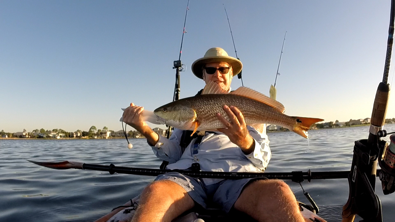 A spectacular day-redfish_29_inches-jpg