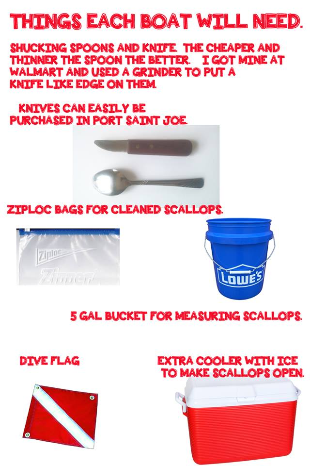 Scallop Cleaning Tools???-s1-jpg