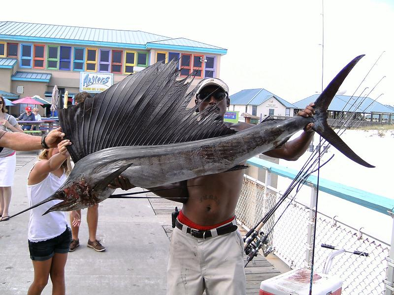 fishing the okaloosa island pier