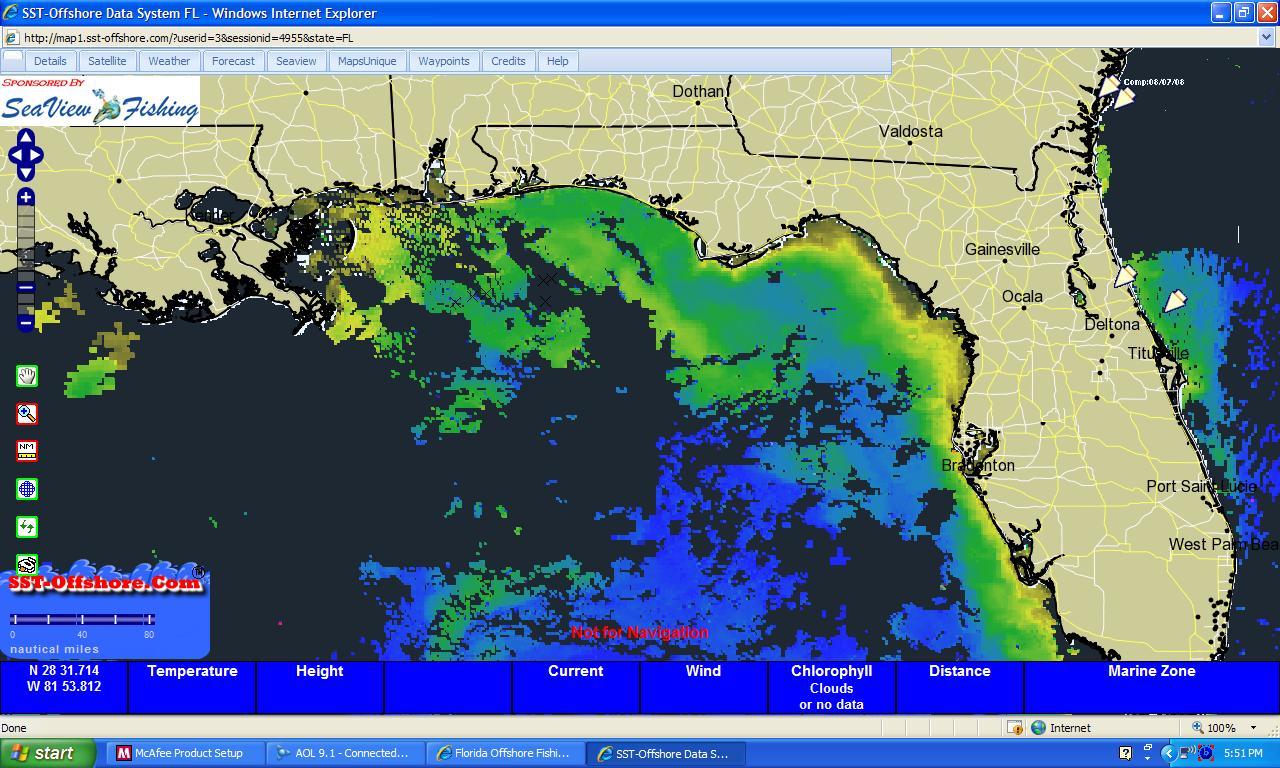 Bluewater Reports?-seaview-plankton-shot-jpg