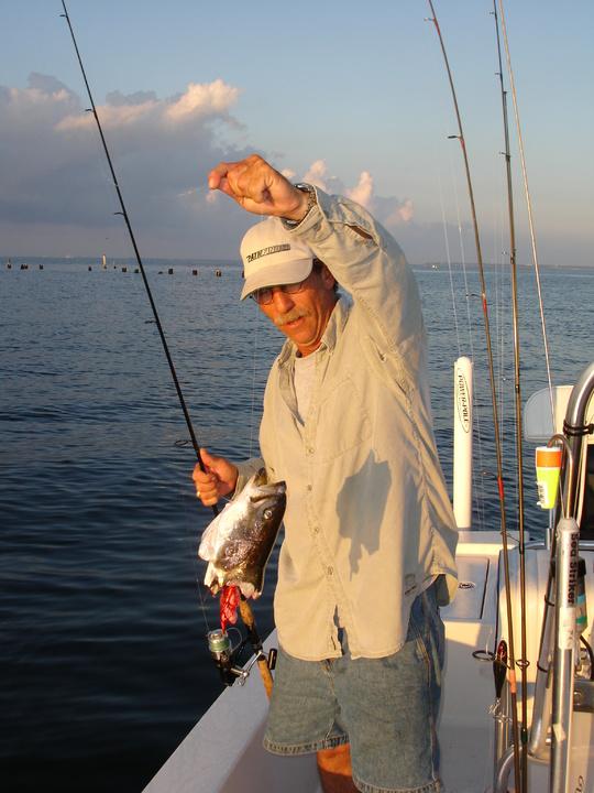 Fishing behind Pensacola Bayfront Stadium?-sharkspec-jo-038-jpg
