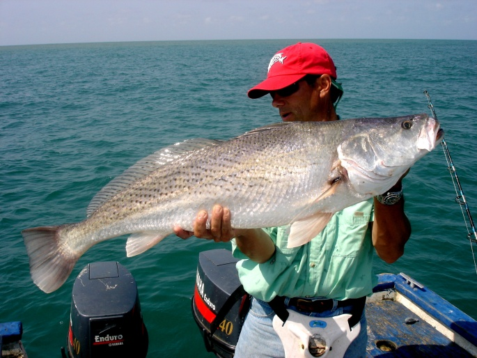 Is this really what I think it is?-speckled-trout-jpg