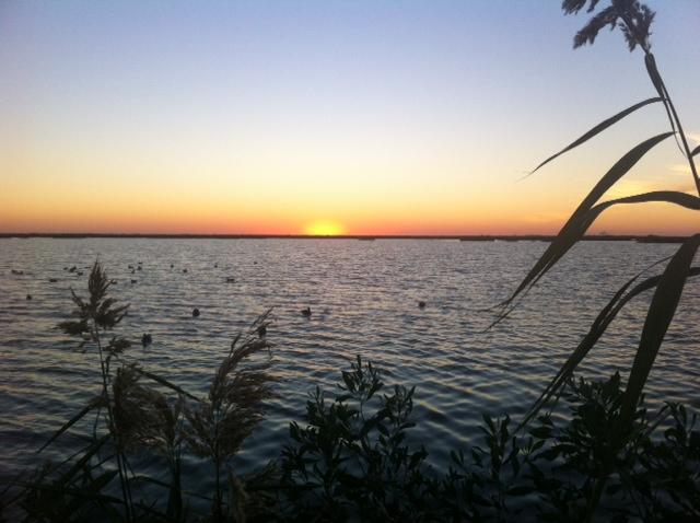 LA duck hunting-sunset-jpg