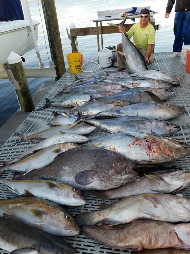Yellowfin tuna!-t1-jpg