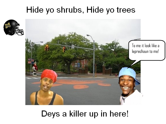 Auburn's historic Toomer's Corner oaks poisoned with herbicide, likely to die-toomers_killer2-jpg