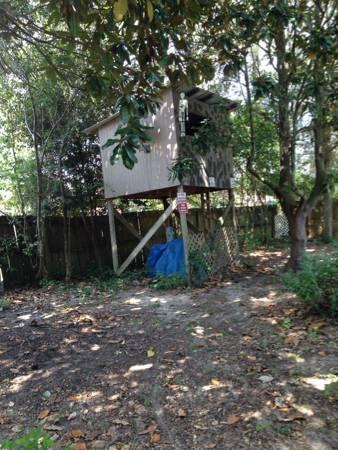 Free treehouse deer stand playhouse west pensacola - Craigslist farm and garden dothan alabama ...