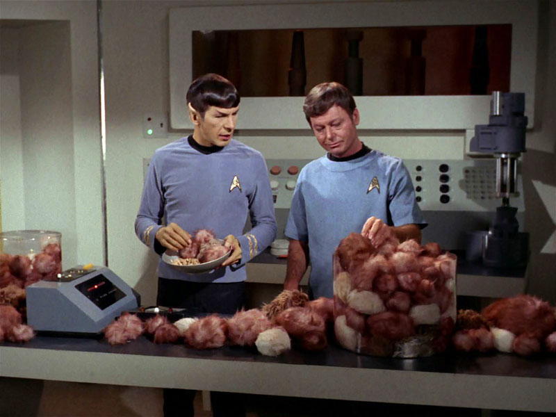 Have You Ever Seen Anything Like Seen This?-trektribbles6-jpg