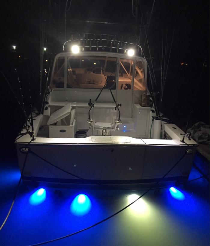 Underwater lights good or bad for YFT?-trip4-jpg
