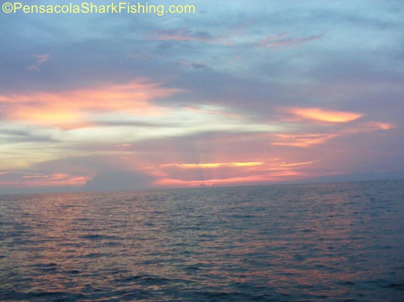 Fat Jax went fishing....-tsr-watermark-0438-jpg