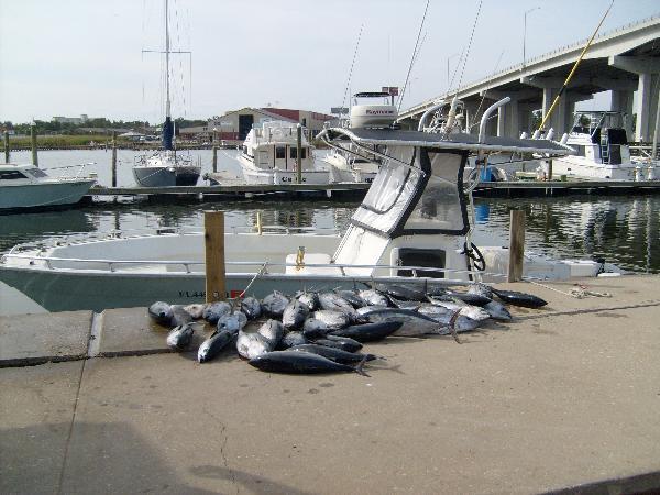 27' Cape Horn-tuna-pics-jpg