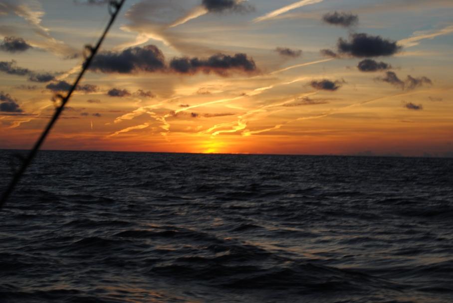 Angry Bird Fishing Charters 12-8 Rig trip-tuna-time-043-jpg