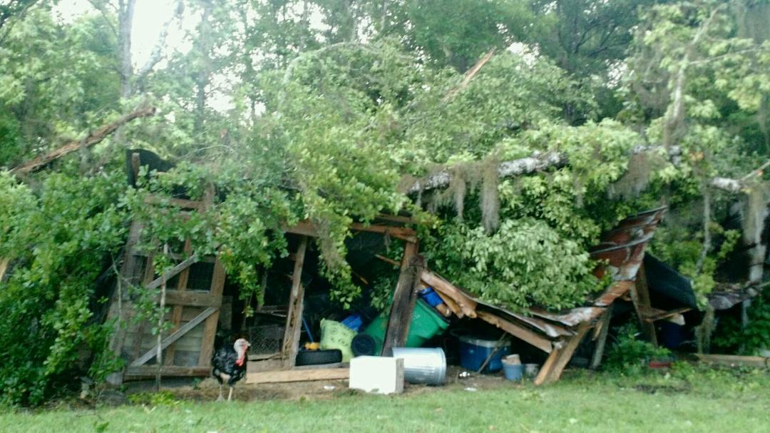 Storm Damaged Yak...BOOOOO!-uploadfromtaptalk1435796039295-jpg