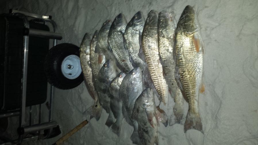 Winter fishing-uploadfromtaptalk1439753370126-jpg