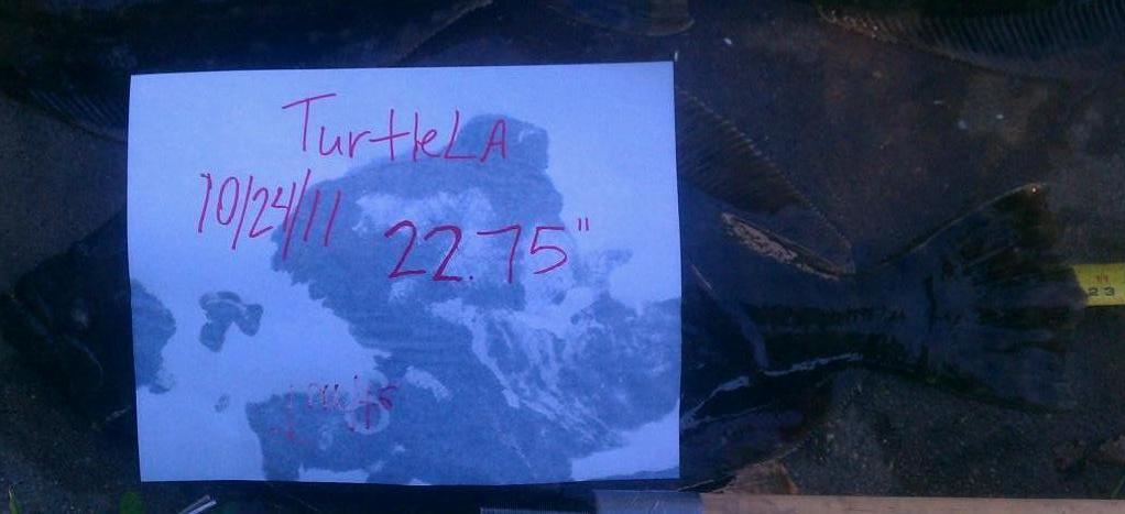 10/24/11 trip- stuck a nice fish-utf-8bsu1brzaxotatms5qcgc-jpg