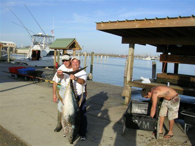 Venice Tuna Trip-venice_january_15_2007_strike_zone_029%5B1%5D-jpg