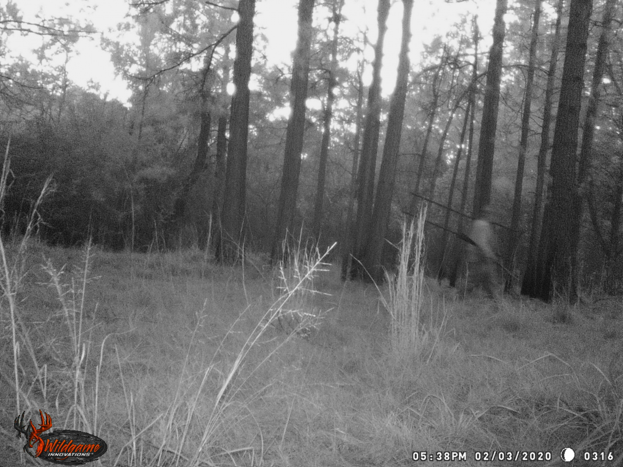 Stolen Tree Stand-walkingaway-jpg
