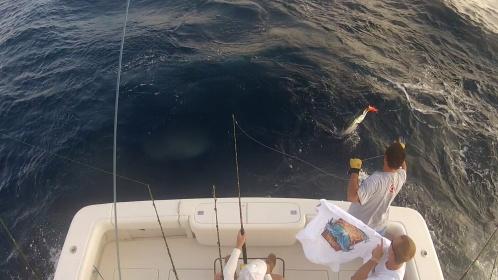 2012 White Marlin Shootout-wm1-jpg