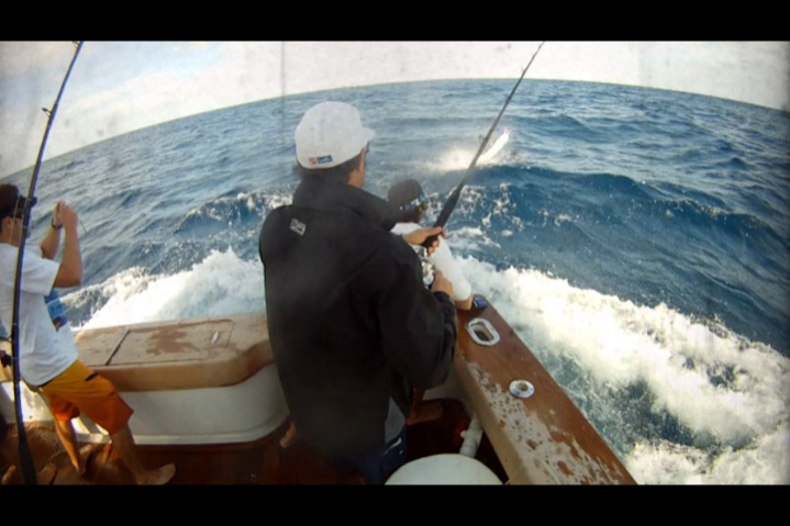 A few sailfish pics from the weekend-woody-wire-2-jpg