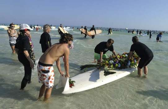 """""""Paddle Out"""" for YS3-ys16-jpg"""
