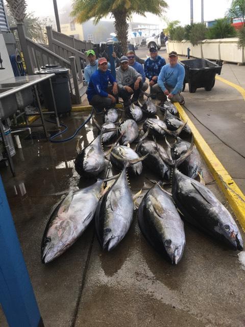 Tuna Trip-zac-tuna2-jpg