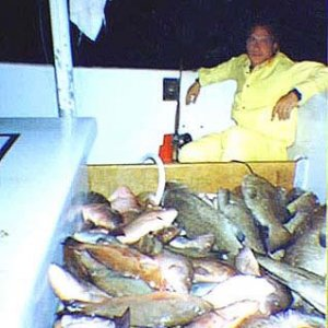Myself and three other guys caught this pile of fish in one daylight day after a bad storm came through in 40 feet of water NW of Tampa.