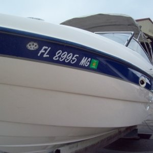 2003 - 249 Bayliner - Compound and wax (full detail)