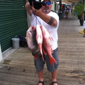 2013 Opening Day of Red Snapper Season With Reel Fishing Charters in Orange Beach AL and very large Trigger.