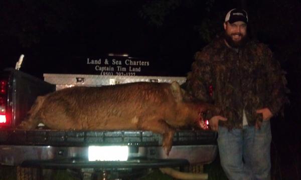 Matt Floyd 200+ boar