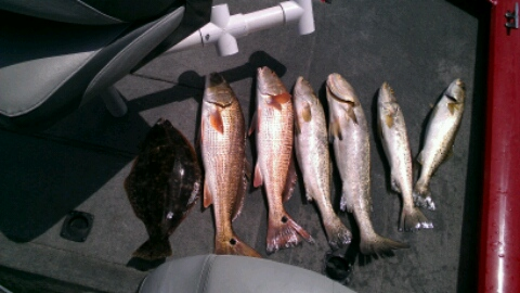 mixed bag