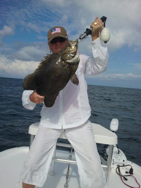 Perdido key fishing charters page 2 pensacola fishing for Perdido key fishing