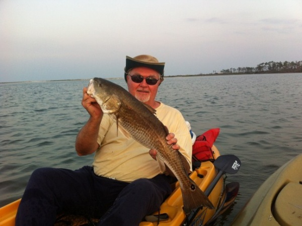 "Redfish 28.5"" off Johnson Beach, Perdido Key."